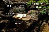 皿の版の皿のMutの自然な木の大皿のタケサービングの皿