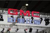 중국 제품 잘 고정된 대중적인 LED 3D 차 로고 표시
