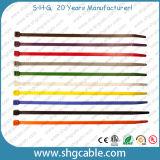 Abwerfbare Kabelbinder des Nylon-66