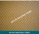 Filtro Belt de tela para produção de ácido cítrico