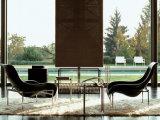Reizvoller Entwurfs-Fiberglas-Freizeit-Stuhl für Wohnzimmer-Dekorationen (FC-025)