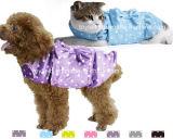 Il cane copre i vestiti dell'animale domestico del vento degli accessori del prodotto