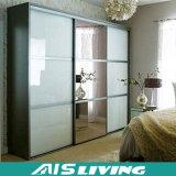 Установленный шкаф шкафа раздвижной двери деревянный (AIS-W002)
