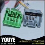 De elektronische ElektroKabel van de Assemblage van de Uitrusting van de Draad van de Apparatuur Mannelijke en Vrouwelijke