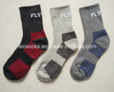 Mens Coolmax Socken, die, steigend, im Freiensport-Socken wandern