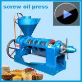 Ventes chaudes ! expulseur d'huile d'arachide 4.5ton/Day, modèle de machine d'arachide Yzyx10-J