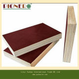 Sr. Glue Brown Construction Film hizo frente a la madera contrachapada