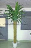 Albero conservato in vaso fortunato falso Hx010426
