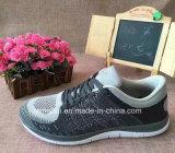 はえのニットの運動靴のスニーカーのブランドの靴