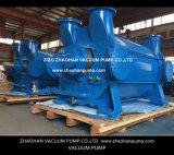 bomba de vacío de anillo líquida 2BE4670 para la industria de papel