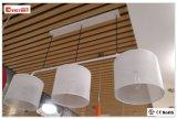 Moderne neue LED-hängende Lampe, moderne Deckenleuchte für den Hall