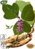 Natürliches Puerarin 25%, Wurzel-Auszug der 40% Isoflavon-40% Kudzu