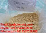 보디 빌딩을%s 신진대사 스테로이드 Trenbolone 강력한 아세테이트 CAS 10161-34-9