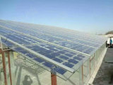 Panneau solaire en verre double vitrage 30V BIPV 240W- 260W