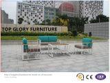 新しいデザイン余暇の屋外のテラスの家具の部門別の庭のソファー(TG-1336)