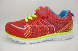 El acoplamiento Runing del deporte de la manera de los niños coloridos calza 16248