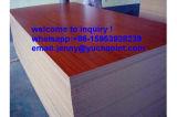 Qualitäts-Pappel-Melamin MDF-Vorstand