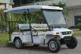Voiture de tourisme électrique certifiée Rariro Ce avec essence 8 places