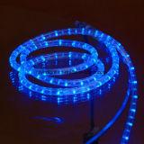 Il Ce RoHS IP65 impermeabilizza l'indicatore luminoso della corda del LED con la garanzia