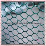 pvc van de Kleur van 60X80mm bedekte Groen het Hexagonale Opleveren van het Kippegaas met een laag