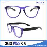 Qualität Soem-Marken-Sonnenbrillen passten Firmenzeichen an