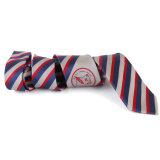 Relation étroite de logo de /Mens en soie de cravate '