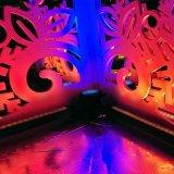 9X15W seis luz ao ar livre da PARIDADE do diodo emissor de luz das cores 6in1