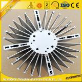 De beste Verkopende Radiator/Heatsink van het Aluminium van het Afgietsel van de Matrijs