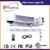 Ebm 630W Cdm CMH 두 배 끝난 (세라믹 금속 할로겐) Hydroponic 1개의 전구로 목록으로 만들어진 전등 설비 120/240V UL를 증가한다