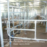 Sala de estar de ordenha da vaca Hl-G2 para o equipamento de leiteria