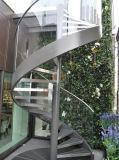 Fornitori della scala/scala a spirale con l'inferriata dell'acciaio inossidabile
