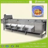 Машина проверки сортируя машины картошки Og-606 и лука веся для индустрии