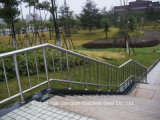 Pêche à la traîne en acier d'escalier en verre de balustrade d'acier inoxydable