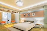 LED-Lampen-doppelte Aluminiumfarben-runde Instrumententafel-Leuchte