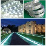 5730 l'UL di cm 110V della striscia 50 del LED ha certificato l'indicatore luminoso del nastro del LED