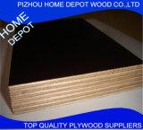A película enfrentou a madeira compensada, madeira compensada comercial de Home Depot