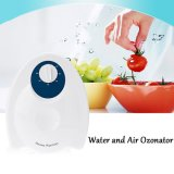 Ozone Sanitizer 400mg Air Water Purifier 3188A
