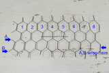 Hot Dipped Galvanized Rabbit Netting/Hexagonal Wire Netting