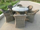 7 pedazos de la rota redonda que cena los muebles al aire libre determinados