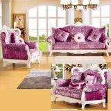 يعيش غرفة أريكة/أريكة خشبيّ/يعيش غرفة أثاث لازم أريكة ([992ك])