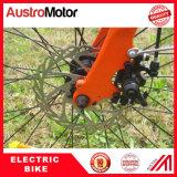 250W 350W 500Wの26inchによって隠される電池Ebikeの都市Eバイク、脂肪質のタイヤ都市Ebike