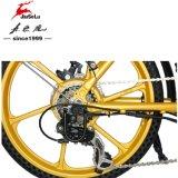 36V 250W Starwheelのアルミ合金フレームの折るバイク(JSL039X48-1)
