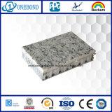 Comitato di superficie nero del favo della pietra della vetroresina per il rivestimento della parete