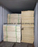 1270X840 / 640 mm Birch Core Veneter Birch for Plywood