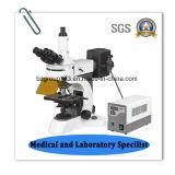 実験室のTrinocular蛍光デジタルの顕微鏡