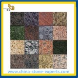 Natural Colourful Stone Granite per Flooring/Wall Tile (YQG-GT1009)