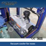 Neues Vakuum 2016, das vor Maschine abkühlt