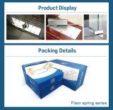 Edelstahl-Bedeckung-Fußboden-Scharniere für Glastür-Großverkauf (FS-106)