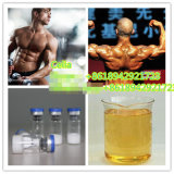 China-Qualitäts-Steroid Hormon-Testosteron Decanoate für Gebäude-Muskel