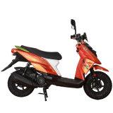 Sanyou 125cc-250cc 가솔린 스쿠터 Ttx